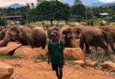 海外移住計画ブログ#21 スリランカのキャンディで旅ノマド。フリーランスブロガーの仕事とノマドおすすめカフェ