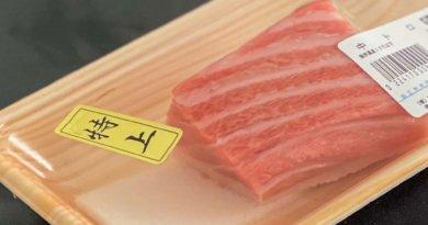 【無料】1ヶ月の独学で握り方を学ぶ寿司完全マップ!初心者のゼロから簡単にYouTube動画教材